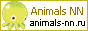 Animals NN - Нижегородское сообщество заводчиков животных