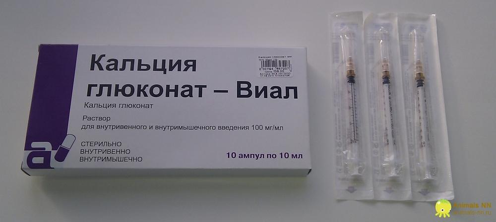 Как правильно сделать укол глюконат кальция 110
