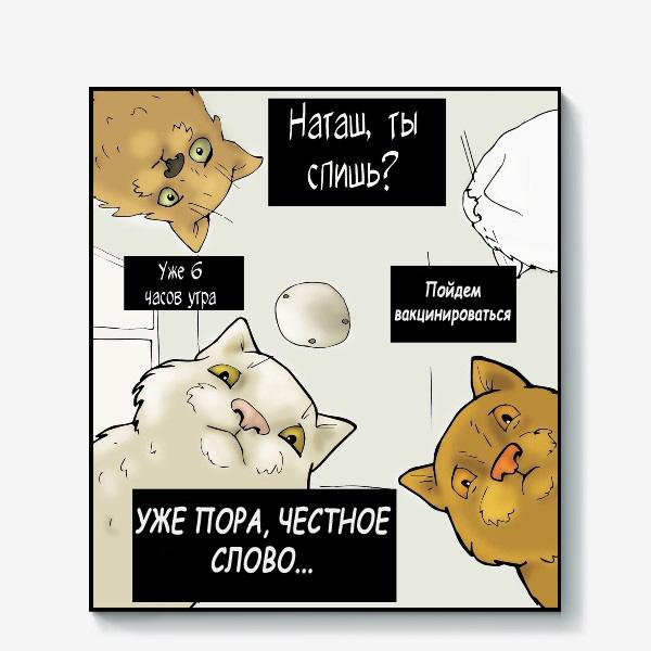 коты над Наташей